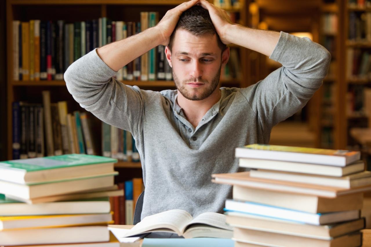 Dissertation publizieren springer